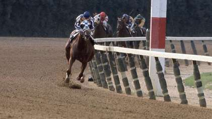 horses Secretariat turcotte