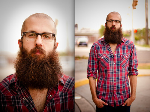 fitzsimmons beard