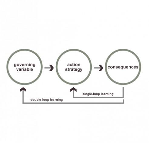 learn double loop_learning
