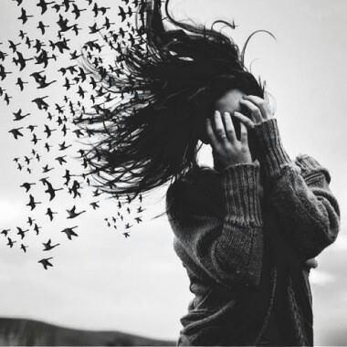 birds freedom hair