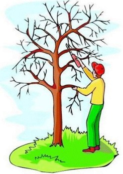 Pruning tree business
