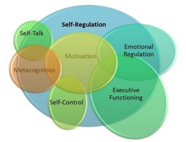 self regulation motivation