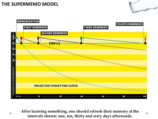 supermemo model forgetting curve telaffects