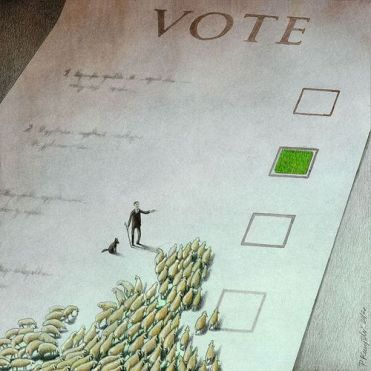 vote choice elect