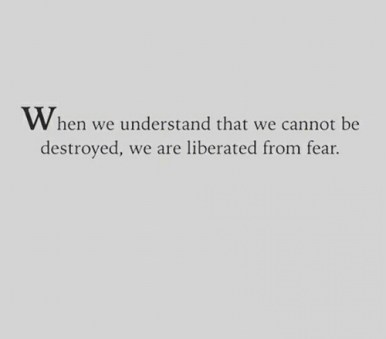 understand we cannot be destroyed liberate from fear freedom self business america