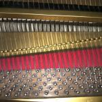 Winkelmann strings and tuning pins