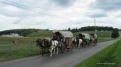 wagon train, Ohio's Amish country