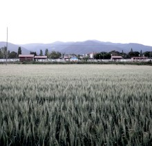Fields at dusk outside Barcelona