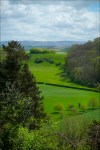 View from Dunster Castle