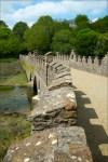 Footbridge At Tintern Abbey