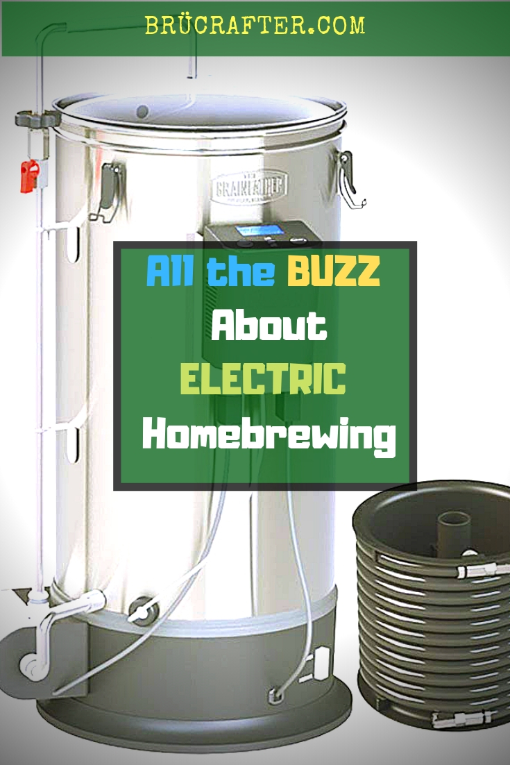Homebrewing Beer - cover