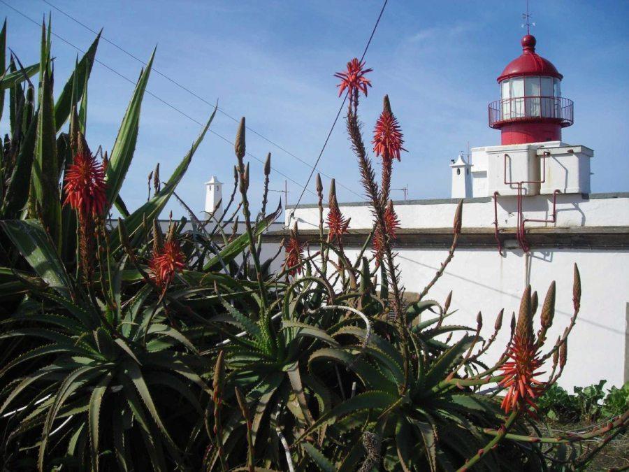 Leuchtturm Ponta do pargo auf Madeira