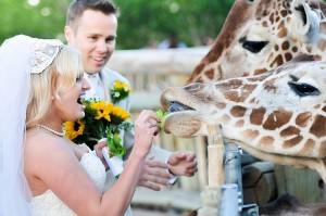 Bruidspaar in de dierentuin