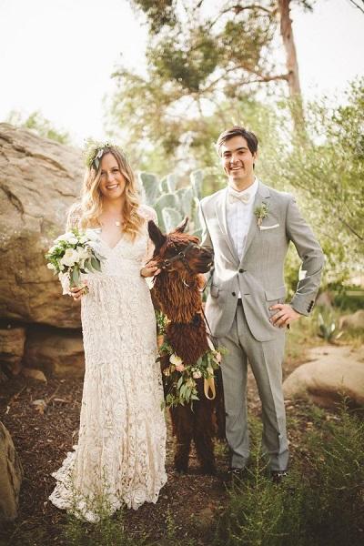 Bruidspaar met alpaca