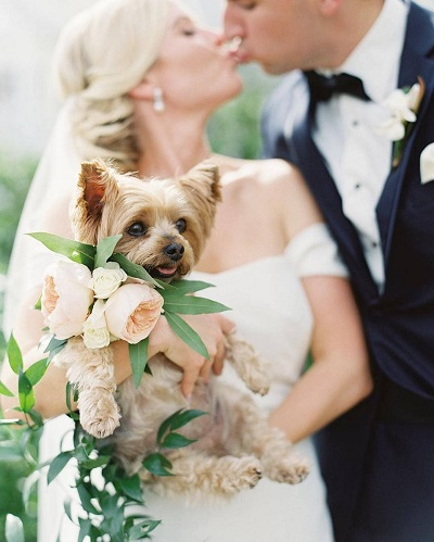 Bruidspaar met hond
