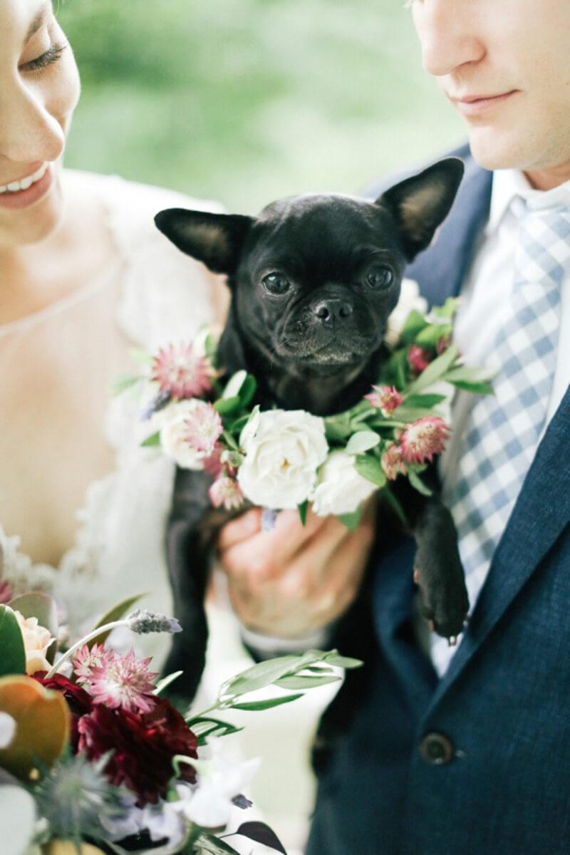 Bruidspaar met hun hond