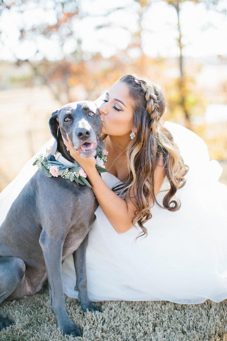 Bruid geeft kus aan haar huisdier