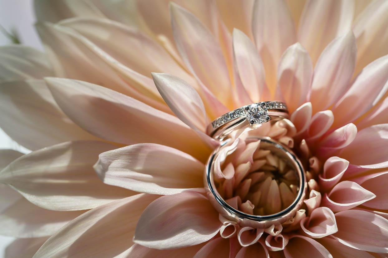 Trouwringen in een bloem