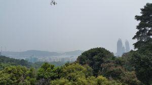 Viewpoint Mount Faber Park