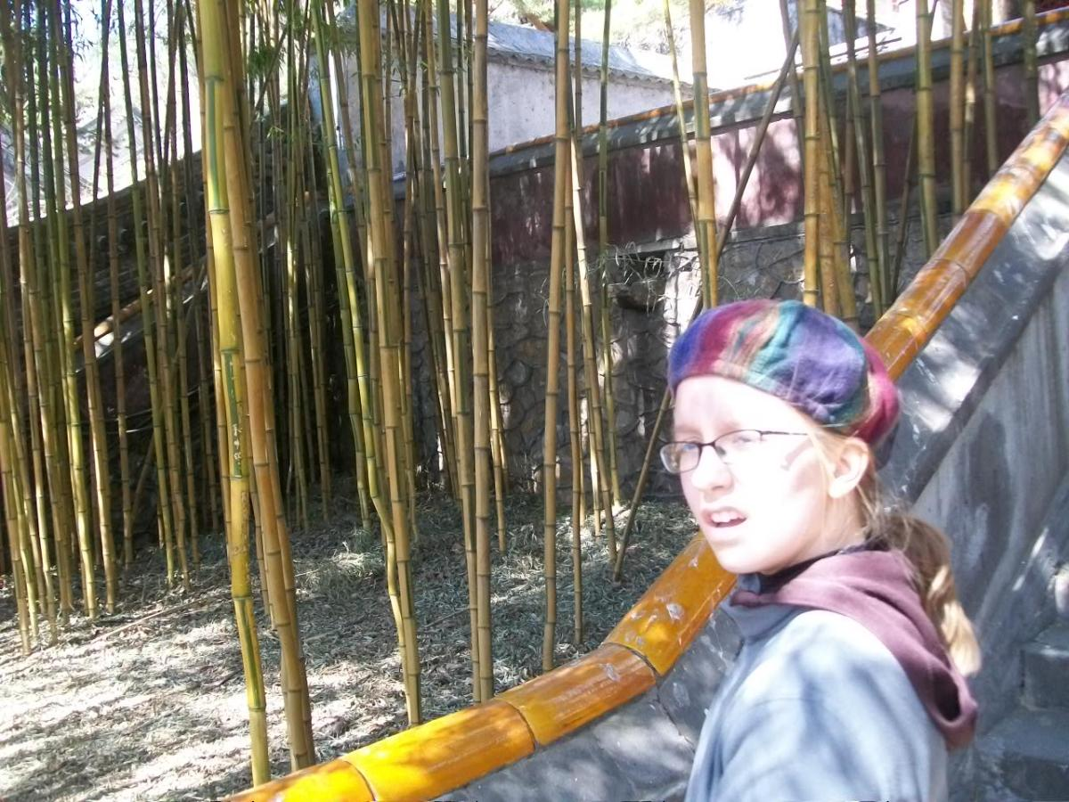 Places to Visit in Beijing: Tanzhe Temple Bamboo