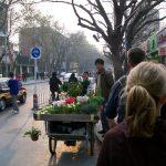 Beijing Bartering