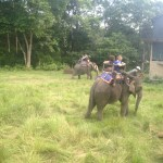 Riding Elephants at Chitwan National Park