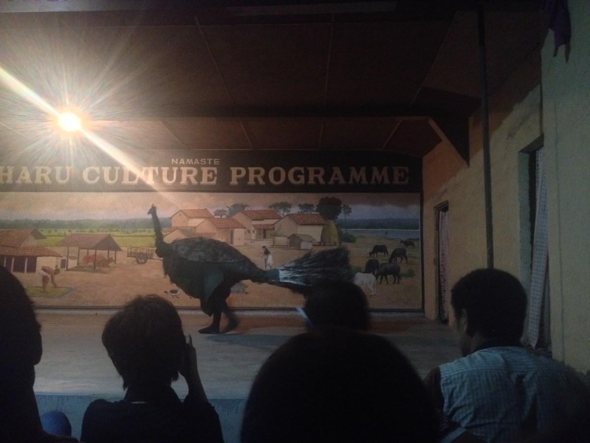 Chitwan National Park: Tharu Dance Program Part V