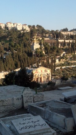 There were some buildings on the hills across from the Mount of Olives. The lower one is known as the Church of All Nations or the Basilica of the Agony.