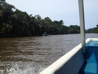 We passed some boats like ours on the way back from Tortuguero.