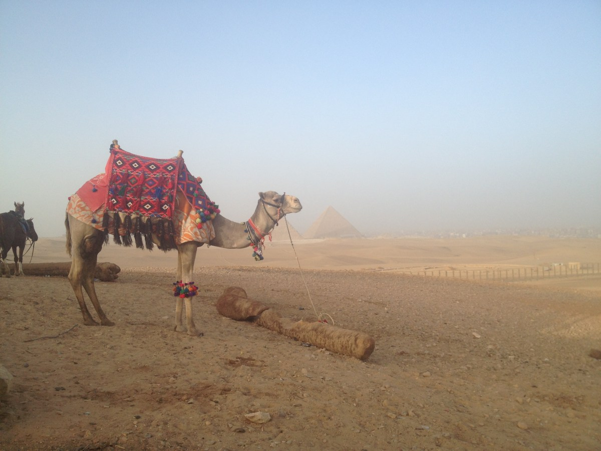 Egypt Tourism: In the Desert after the Camel Ride Part II