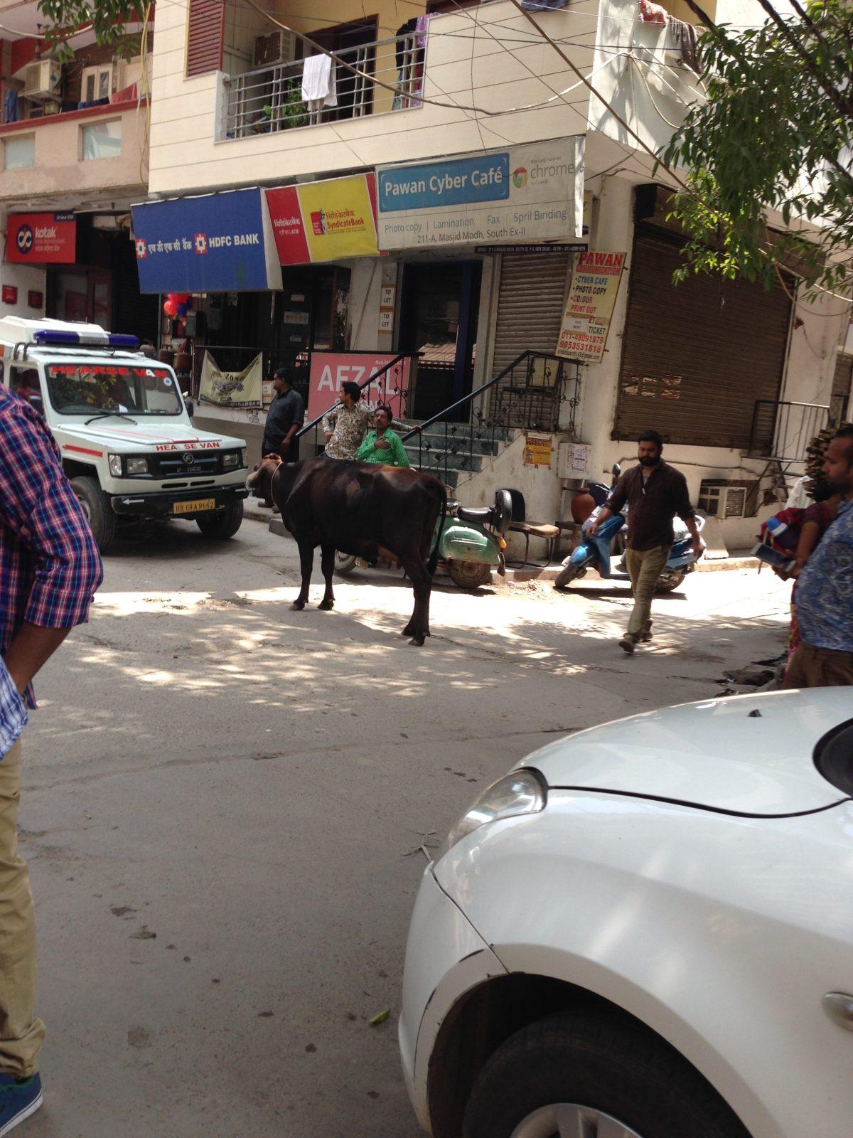 Delhi: Patriotic Parade