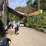 Asian Health Resorts and Spa