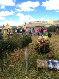 We visited Lake Titicaca with a tour group.