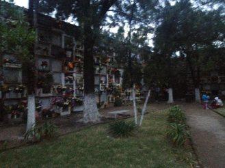 Dia de los Muertos Guanajuato Mexico46