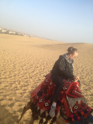Nazlet Al Sammam Cairo Egypt Camels Lydian