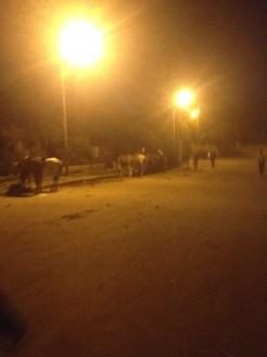 Cairo Egypt Nazlet Al Sammam