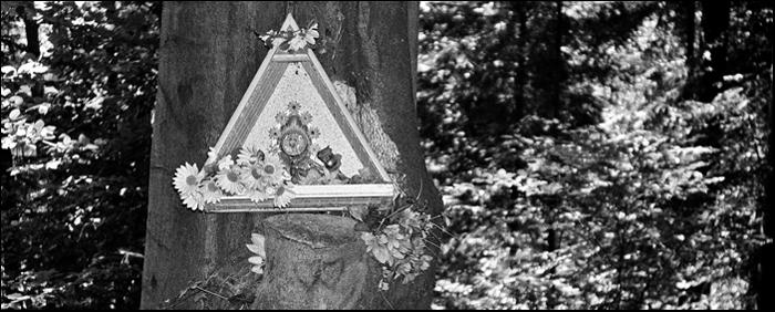 Po dluzszej nieobecnosci zauwazylem w okolicach Kielc olbrzymia wrecz liczbe kapliczek