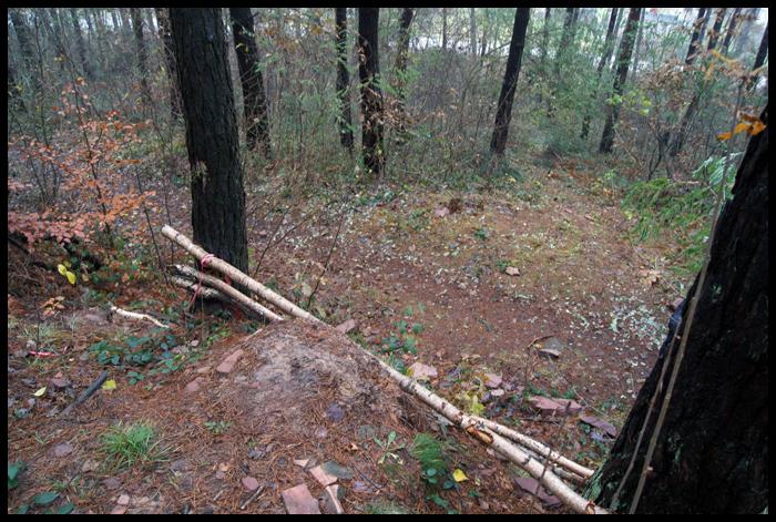 """lesna hopa przy torze w """"miedziance"""""""