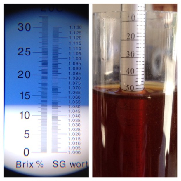 Refractometers Are They Really Worth It Brlosophy