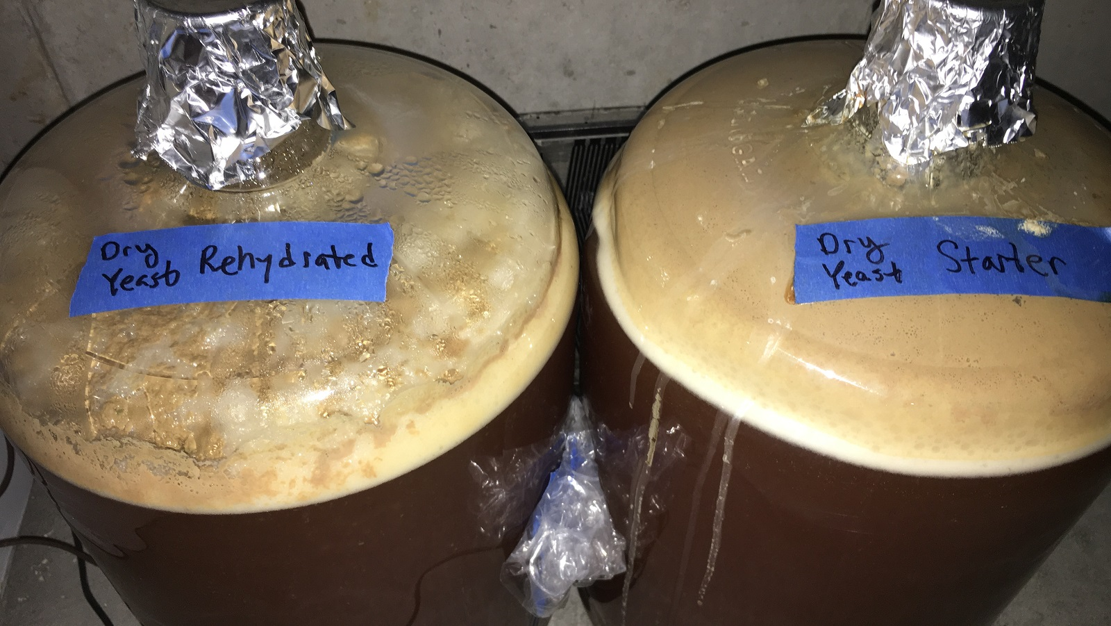Yeast Pitch Rate Pt 6 Starter Vs Rehydration With Dry Yeast
