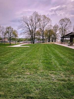 grass sod laid, Kentucky, grass sod