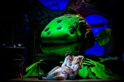 sam-lupton-as-seymour-and-stephanie-clift-as-audrey-in-little-shop-of-horrors-small-2