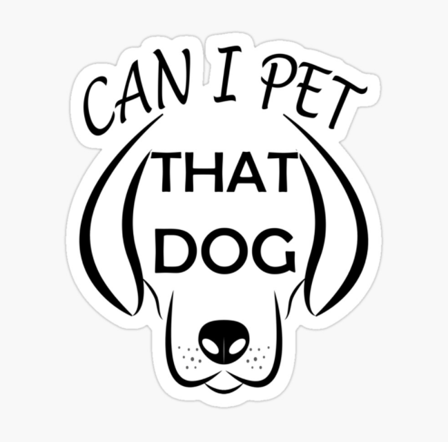 CAN I PET THAT DOG