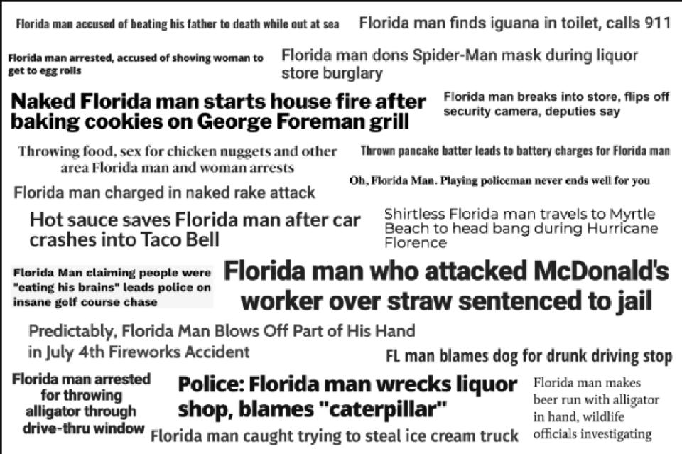 Florida Man Detailed