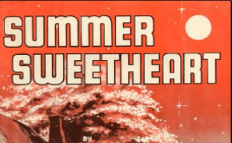 Image Of Summer Sweetheart Novel read online