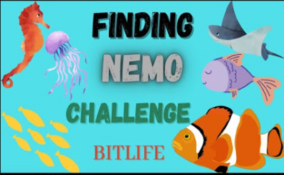 Image Of What Is Finding Nemo Challenge