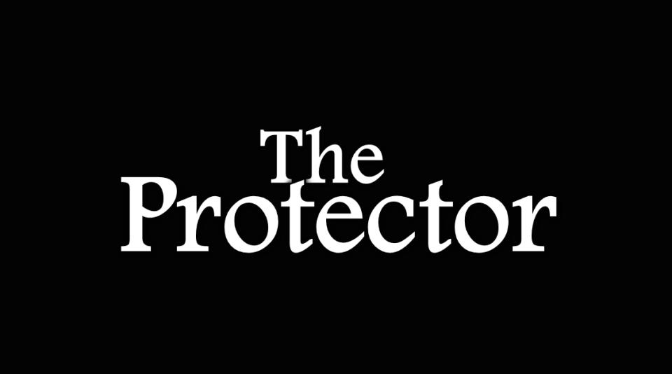 Image of the Protector Novel Levi Garrison