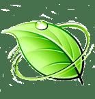 icone feuille verte
