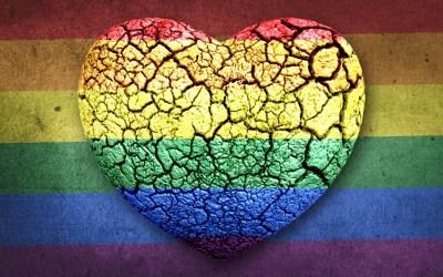 """'Moet de LGBTI+-gemeenschap bang zijn voor """"het nieuwe normaal""""?' (Knack)"""