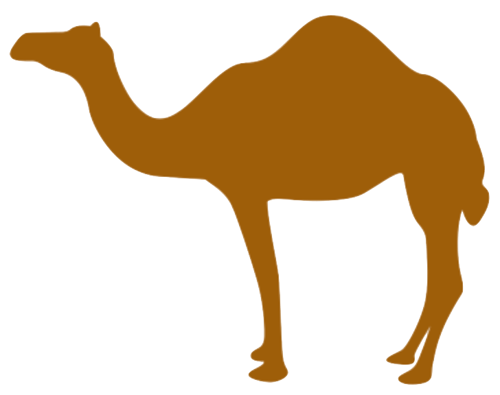Monitoring Camel with Prometheus in Red Hat OpenShift - Open Sourcerers